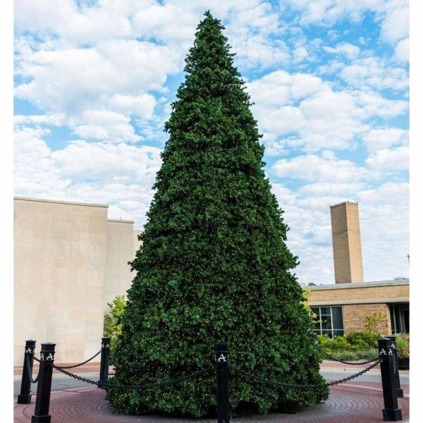 Santa.net Product: Christmas Tree